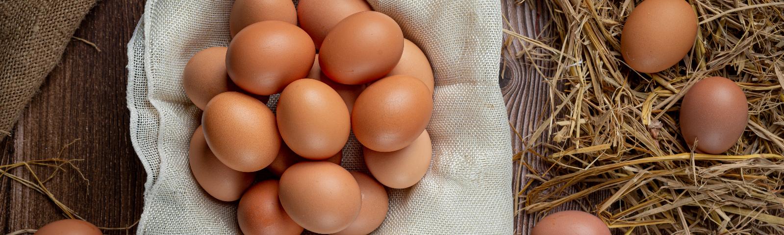 Eier frisch